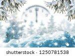 winter background of frost fir... | Shutterstock . vector #1250781538