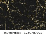 luxury marble background with... | Shutterstock .eps vector #1250787022