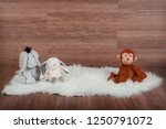 Wooden Backdrop With Sheepskin...