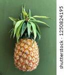 dishevelled pineapple on a...   Shutterstock . vector #1250824195