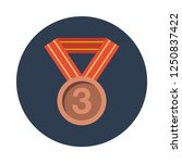 3rd place bronze award medal...