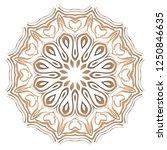 mandala pattern. traditional... | Shutterstock .eps vector #1250846635