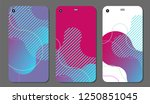set fashionable abstract... | Shutterstock .eps vector #1250851045