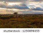 Landscape Photograph Taken On...