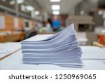 important documents in the... | Shutterstock . vector #1250969065