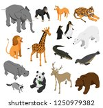 herbivorous and predatory zoo... | Shutterstock .eps vector #1250979382