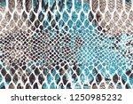 snake fashion pattern | Shutterstock .eps vector #1250985232