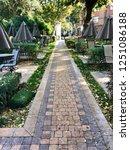 autumn comes to yerevan | Shutterstock . vector #1251086188