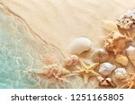 starfish and seashell on the... | Shutterstock . vector #1251165805