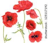 Illustration Of Poppies