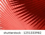 beautiful tropical leaves... | Shutterstock . vector #1251333982