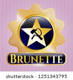 golden emblem or badge with... | Shutterstock .eps vector #1251343795