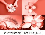 creative collage in living...   Shutterstock . vector #1251351838