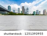 panoramic skyline and buildings ... | Shutterstock . vector #1251393955
