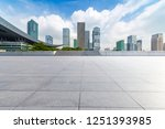 panoramic skyline and buildings ... | Shutterstock . vector #1251393985