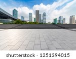 panoramic skyline and buildings ... | Shutterstock . vector #1251394015