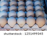 egg in the panel at the market | Shutterstock . vector #1251499345