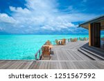 tropical beach in maldives with ... | Shutterstock . vector #1251567592