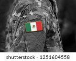 flag of mexico on soldiers arm. ... | Shutterstock . vector #1251604558