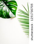 floral concept with green...   Shutterstock . vector #1251730705