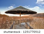 reed pavilion in the reeds   Shutterstock . vector #1251770512