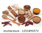 fat busting spices for losing... | Shutterstock . vector #1251890572
