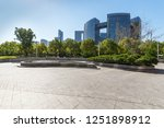 panoramic skyline and buildings ...   Shutterstock . vector #1251898912