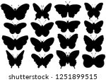 set of sixteen various forms of ... | Shutterstock .eps vector #1251899515