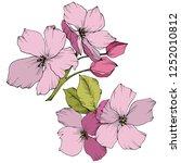 vector. apple blossom flowers.... | Shutterstock .eps vector #1252010812