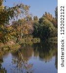 beautiful autumn landscape in a ... | Shutterstock . vector #1252022122