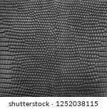 black lizard skin pattern... | Shutterstock . vector #1252038115