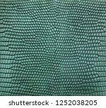 green lizard skin pattern... | Shutterstock . vector #1252038205