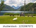 schwangau  bavaria  germany  ... | Shutterstock . vector #1252087072