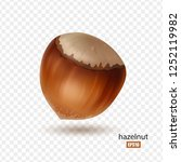 hazelnut isolated on... | Shutterstock .eps vector #1252119982