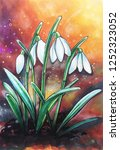 blooming snowdrops on a...   Shutterstock . vector #1252323052