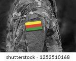 flag of democratic federation... | Shutterstock . vector #1252510168