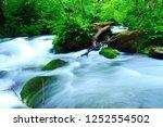"tourist attraction ""oirase... | Shutterstock . vector #1252554502"