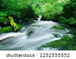 "tourist attraction ""oirase... | Shutterstock . vector #1252555552"