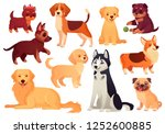 Stock vector cartoon puppy and dog happy puppies with smiling muzzle loyal dogs and friendly dog husky corgi 1252600885