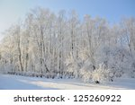winter park in snow | Shutterstock . vector #125260922