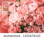 beautiful bouquet with roses ...   Shutterstock . vector #1252676122