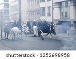 Brussels  belgium. 8th dec ...