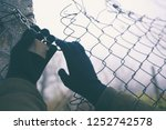 gloved hands on wire fence on... | Shutterstock . vector #1252742578