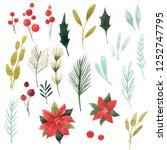 watercolor christmas floral set ... | Shutterstock . vector #1252747795