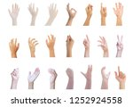 hand multiple collection with... | Shutterstock . vector #1252924558