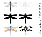 isolated  dragonfly insect  set ... | Shutterstock .eps vector #1252952095