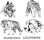 set of vector drawings on the... | Shutterstock .eps vector #1252958998