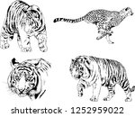 set of vector drawings on the... | Shutterstock .eps vector #1252959022