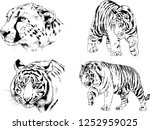 set of vector drawings on the... | Shutterstock .eps vector #1252959025