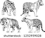 set of vector drawings on the... | Shutterstock .eps vector #1252959028
